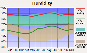 Spruce Creek Fly-in Average Humidity