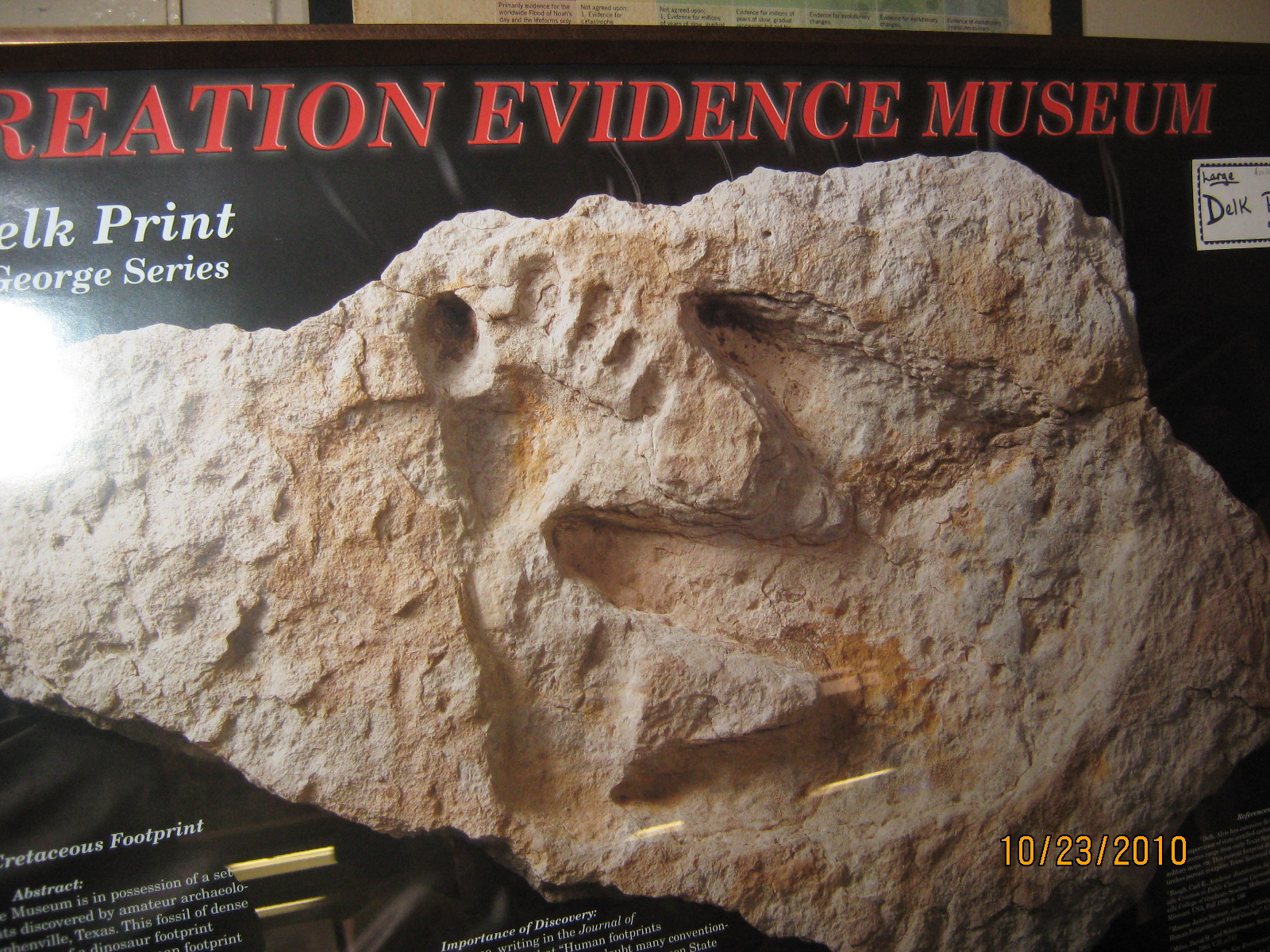 Taylor Trail: Evidence that Dinosaurs and Humans coexisted  |Paluxy Evidence