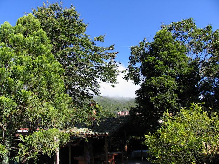 Cerro La Conejera