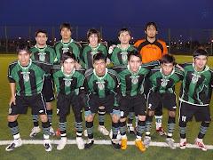 9º Fecha - liga Sur 2008