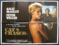 Cat Chaser poster