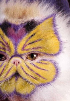 Painted Cats