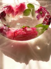Hielo y Rosas