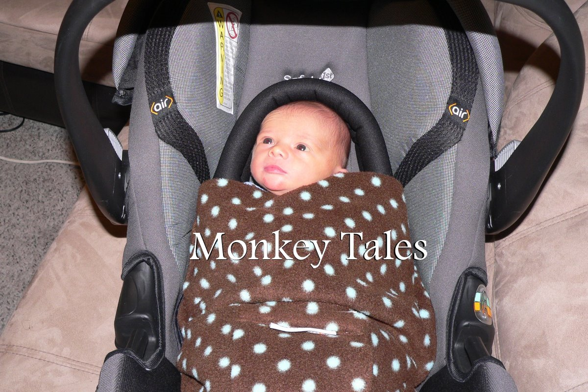 f900400181ed Monkey Tales     BABY BLESSINGS-Wiggy Roll Car Seat Blanket Review ...