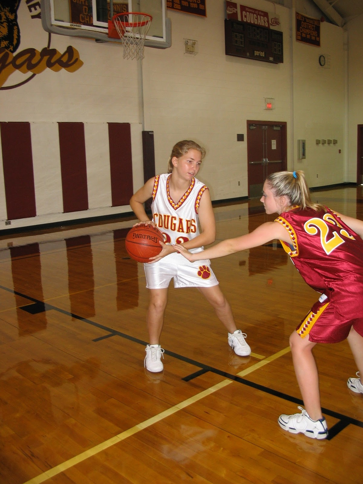 Womens College Basketball League - History