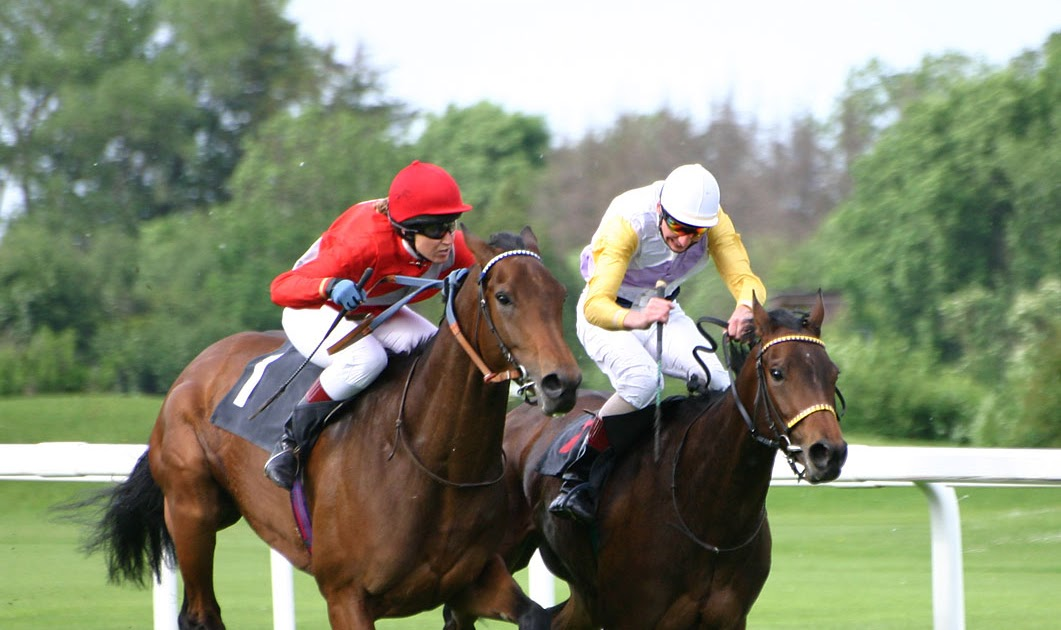 Easy Horse Racing System