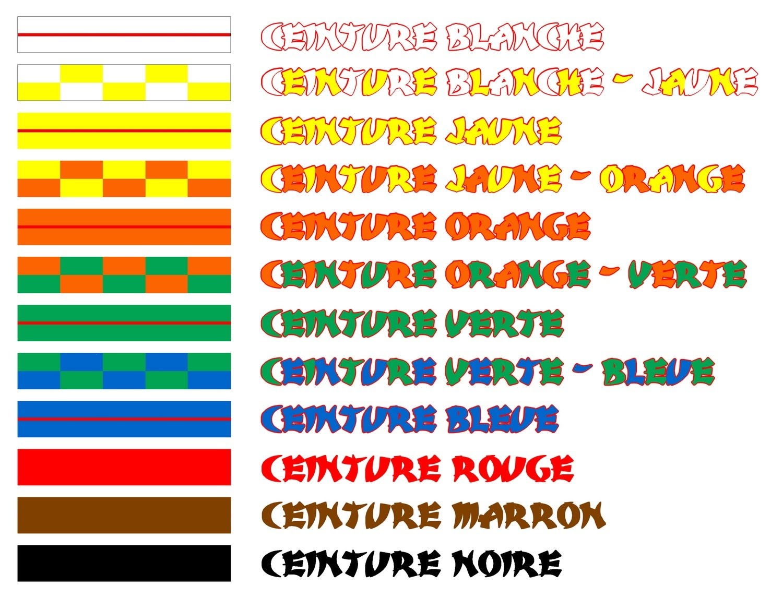 Les ceintures sont donc (pour le karaté club d Aix les Bains), dans l ordre  d obtention   80d7dca5857