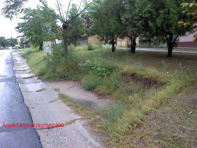 http://1.bp.blogspot.com/_SL9qXB4zQZM/TLCaWqdMRBI/AAAAAAAAAAk/pG84df0VU6s/s1600/002.jpg