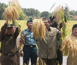 foto presiden SBY di Purworejo