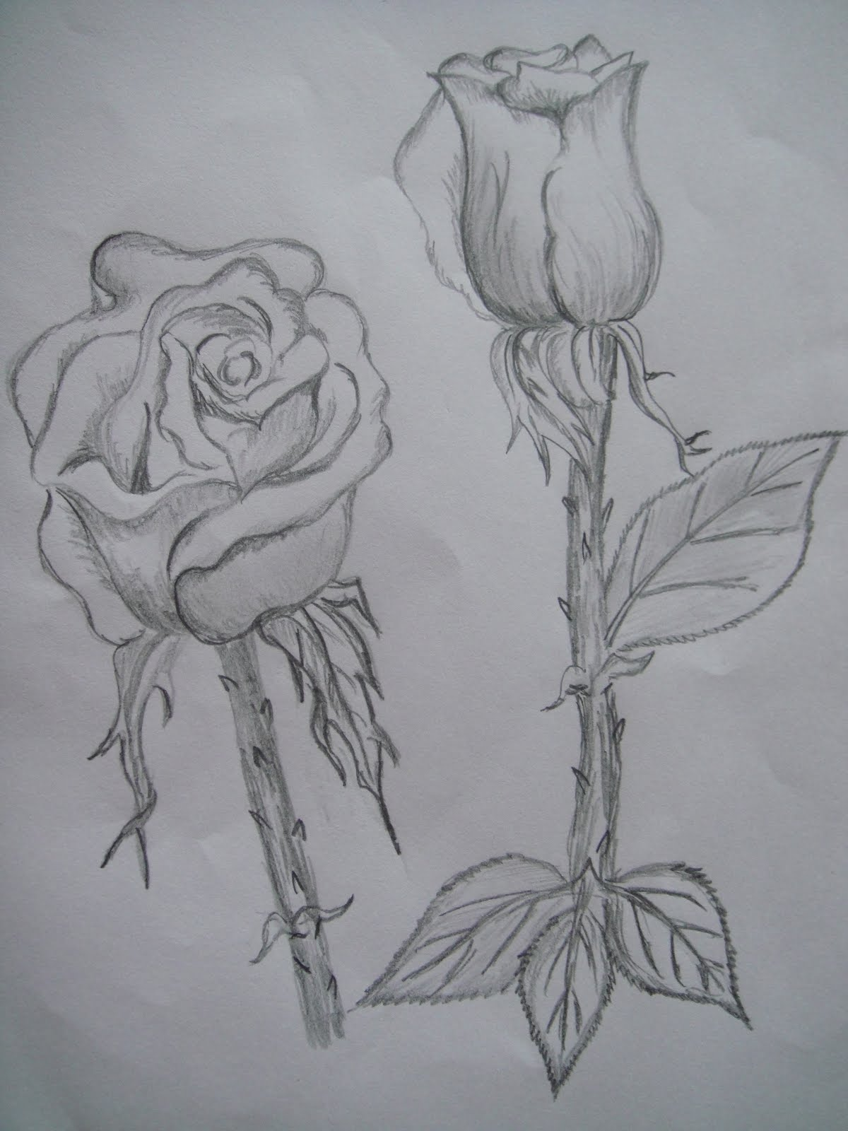 Some pencil sketches
