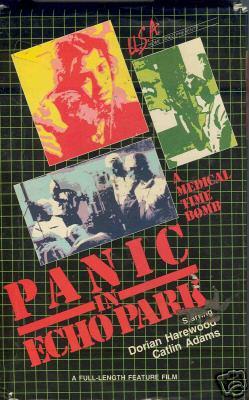 PANIC IN ECHO PARK (1977)