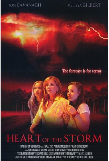 HEART OF THE STORM (2004)