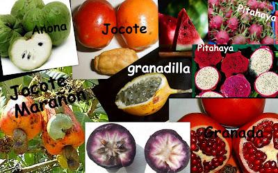 Disfrutando De La Vida Fruta