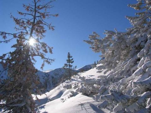 Un hivern per esquiar