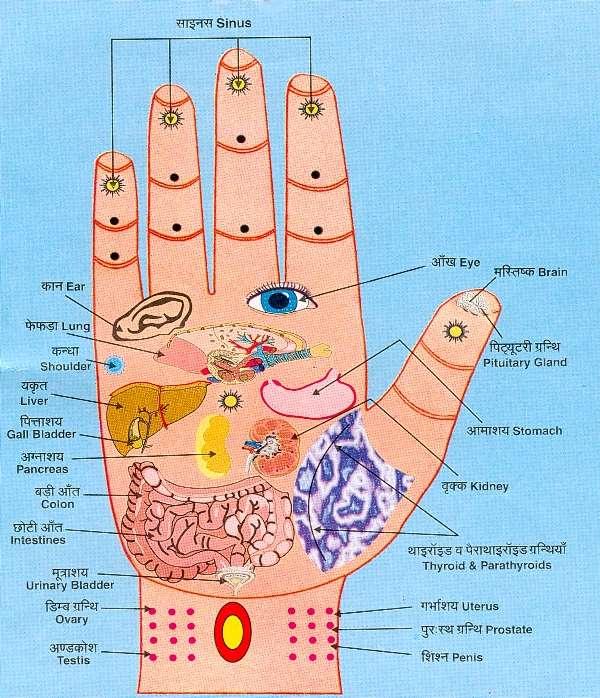 FIREBERT: Reflex points, hands, feet and face.