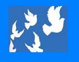 كبوتر صلح و آزادي