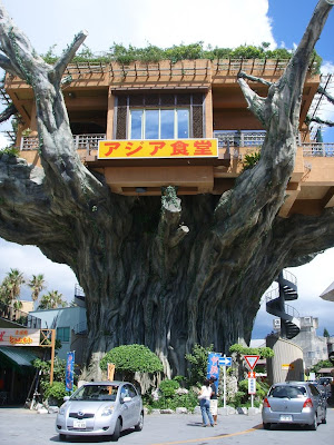 Treehouse in Okinawa, Japan