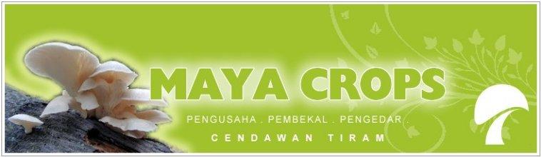 Maya Crops & Cultivation