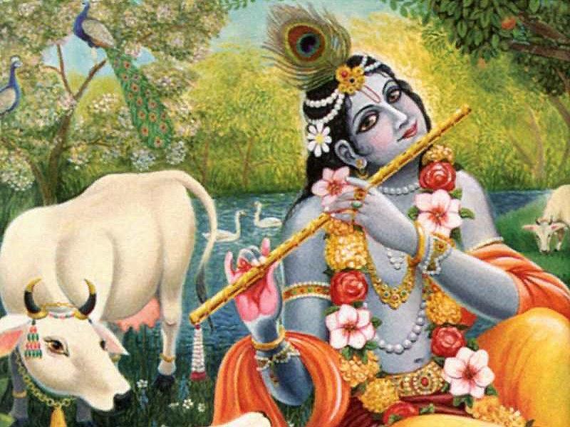 HariHarji: Braj Bhoomi Mohini: Shri Nandgaon-Tryst With