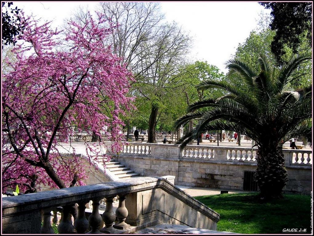 Jardins De La Fontaine A Nimes Languedoc Roussillon