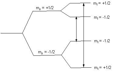 Vanadium Chemistry: Electron paramagnetic resonance (EPR)