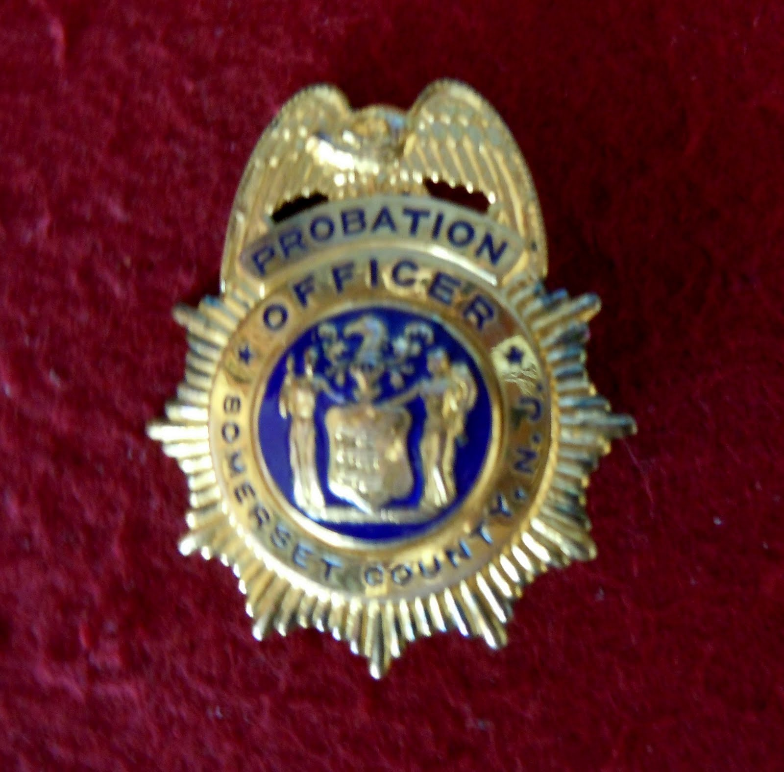 Badge Collector Nj Probation Collection S Is For Somerset