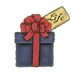 Life is a gift. Open it!