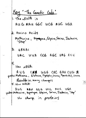 Dna Codons Answer Key