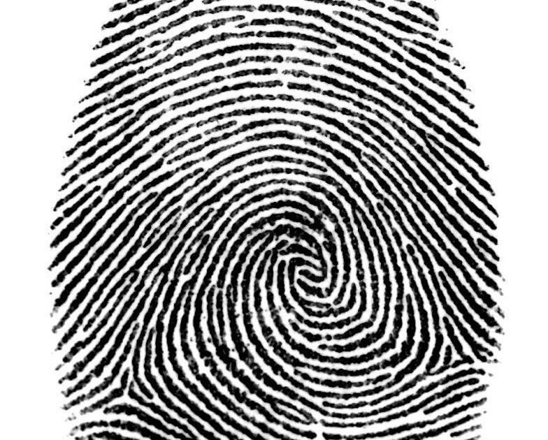How To Connect A Fingerprint Reader Hardware Technical Support