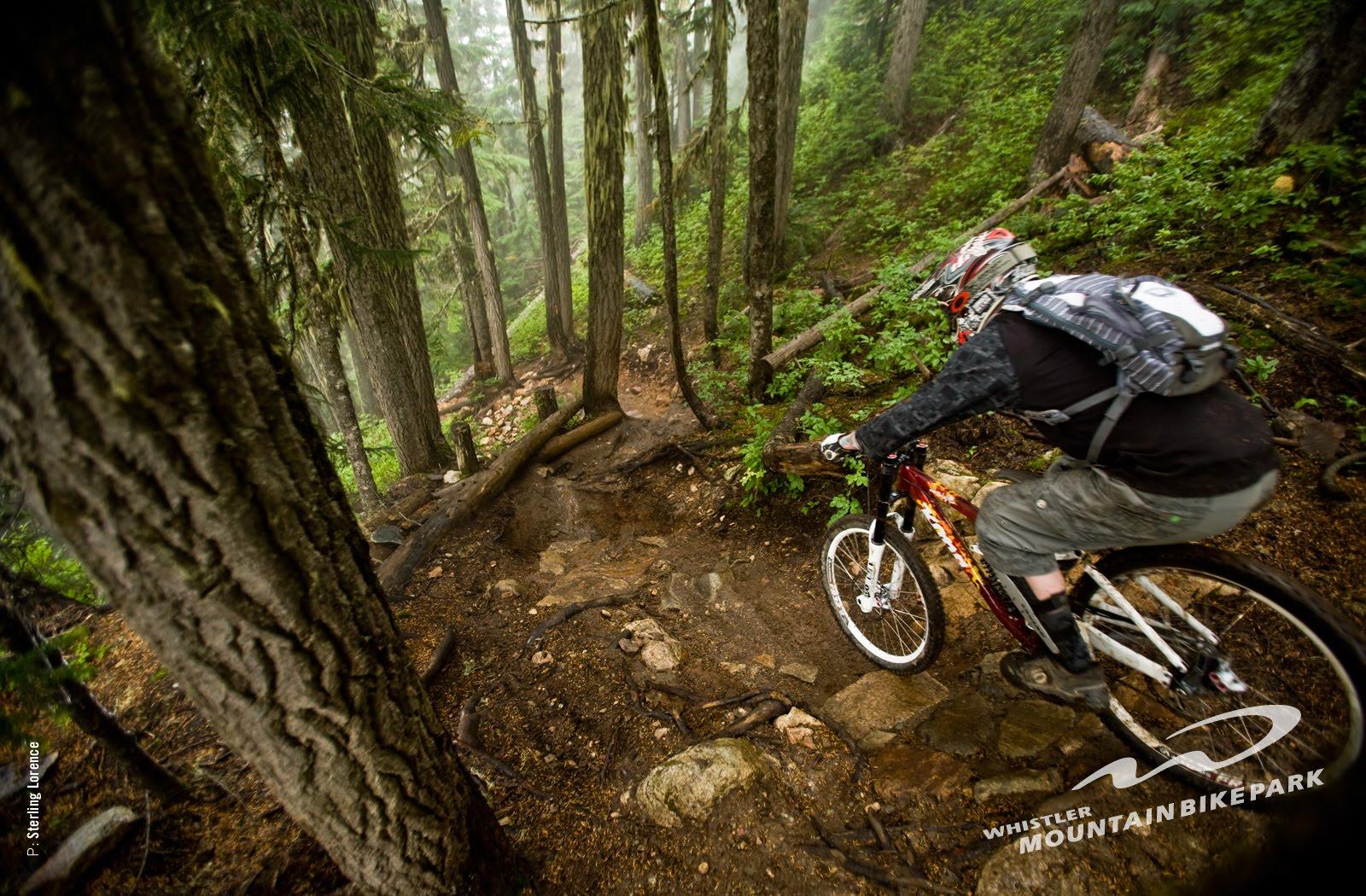 wallpaper bike sport downhill - photo #30