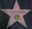Marilyn's Star