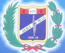 IE JCT 1173