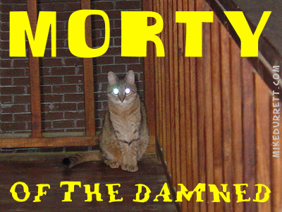 Morty Cat as Morty of the Damned