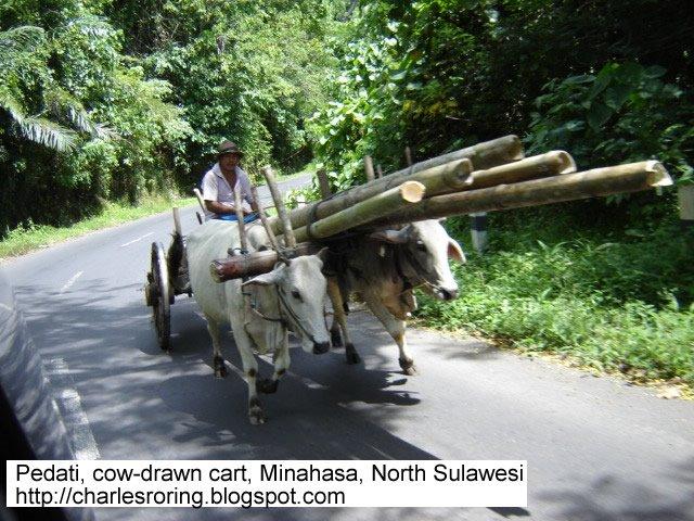 Minahasa Sulawesi Utara