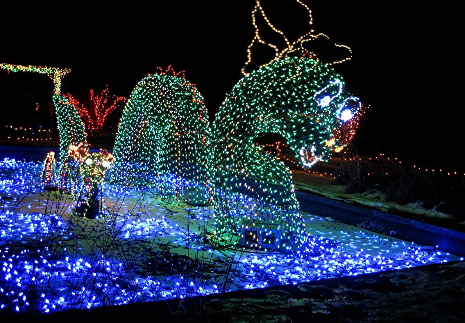 Brookside Gardens Christmas Lights