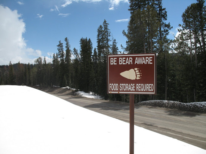 Be aware of bears, brother