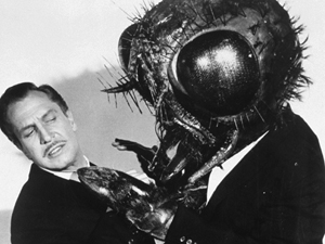 Image result for the fly vincent price
