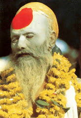 sadhu indù