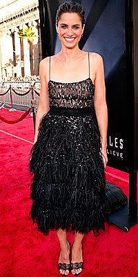 amanda peet in derek lam sequin and fether dress
