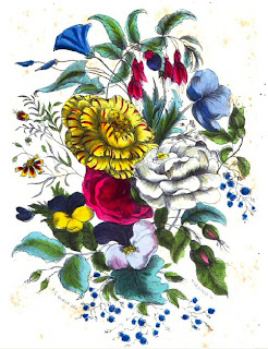 Civil War Reenacting Language of Flowers