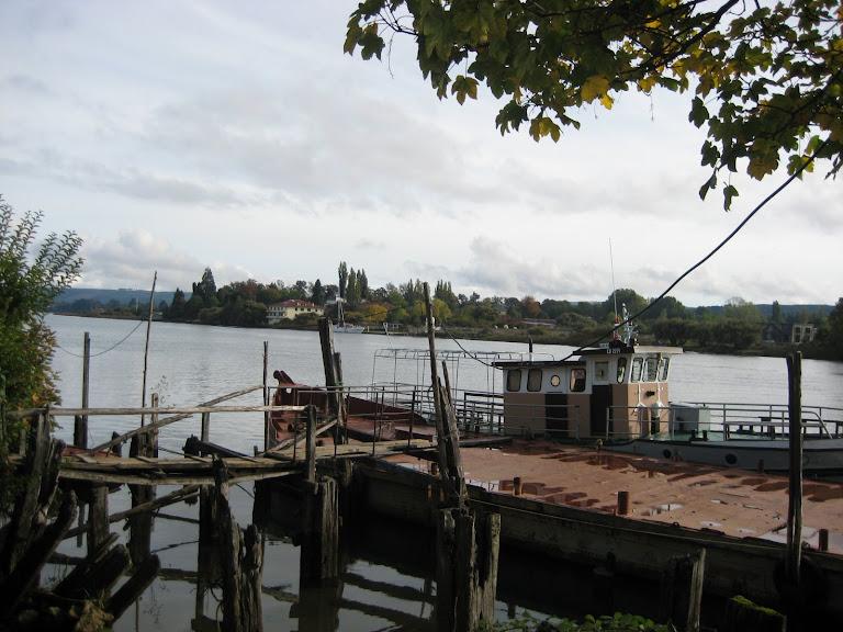 Río Valdivia