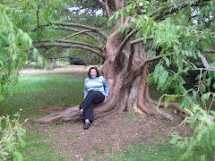 Norita en el Jardín Botánico UACH