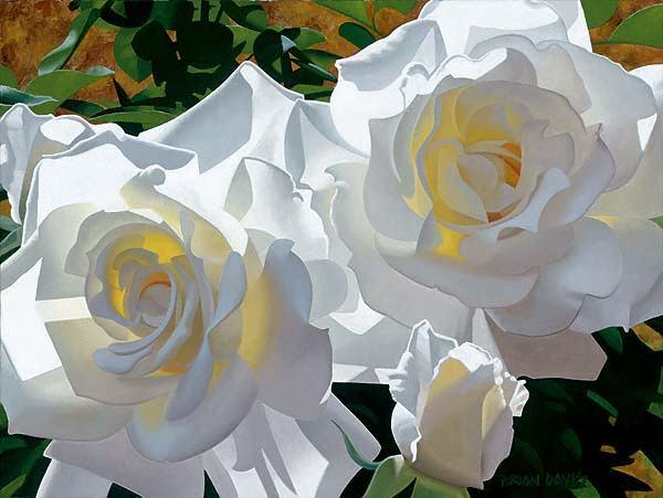 Flores  para a Paz