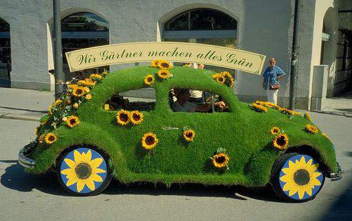 Amazing grass cars