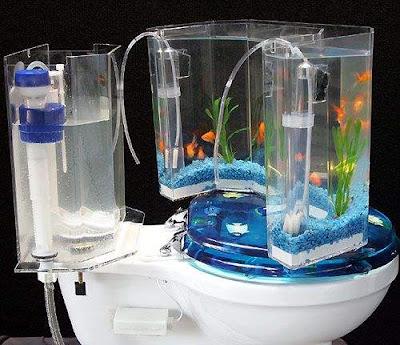 flush toilet 02 - Akvaryumlu Tuvaletler