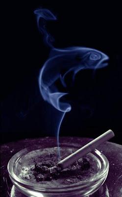 smoke art 15 - Smoke Art