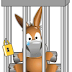 Il mulo in gabbia?