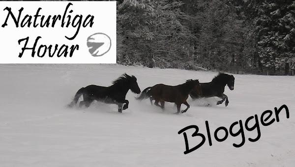 Naturliga Hovar blog