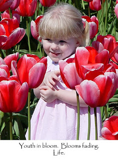 Child in tulip field, photo by Robin Atkins