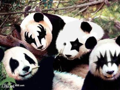 Tu ??? owó Tu Foto >o< Panda